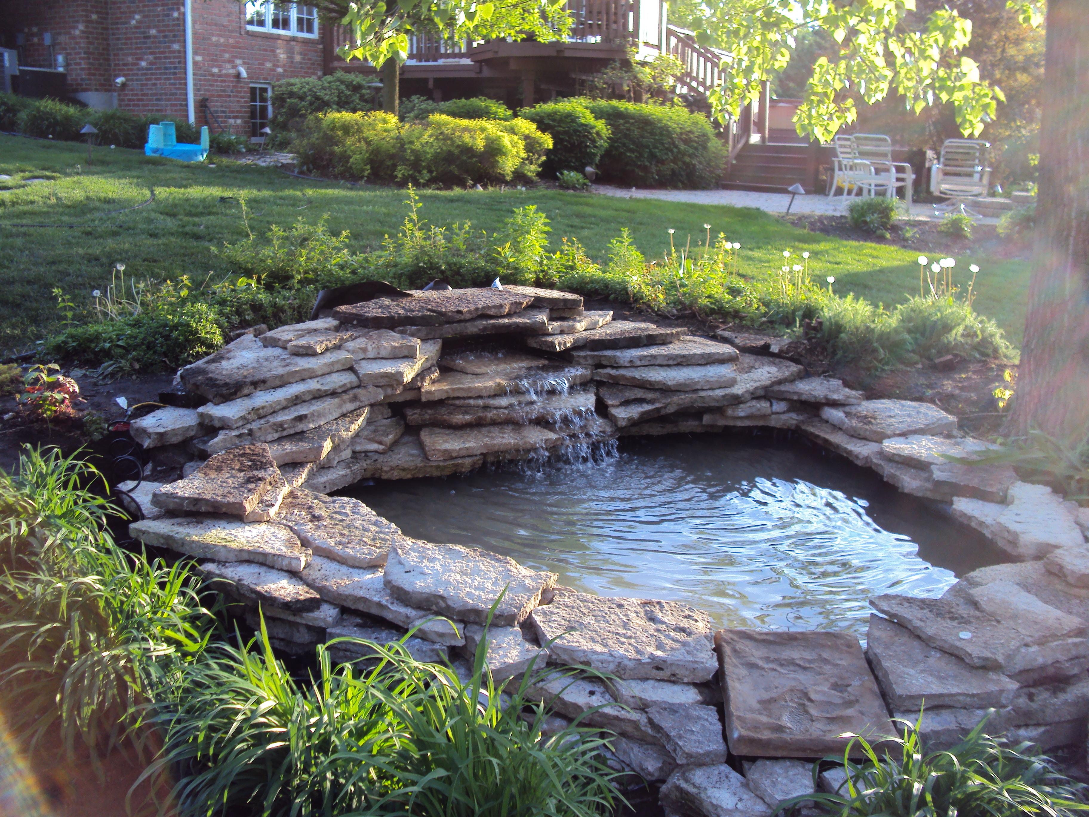 water gardening bruceworks