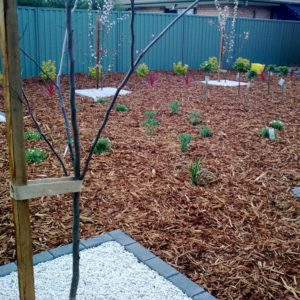 Mulch Garden Bed